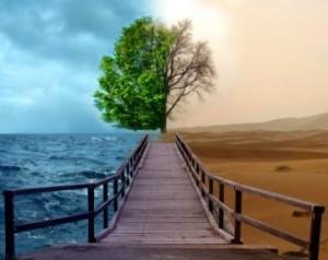 sustentabilidade-ambiental-300x238