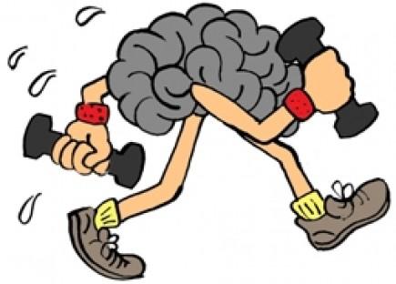 exercite o cerebro