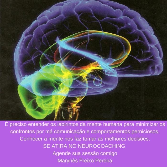 cerebro-e-neurocoaching